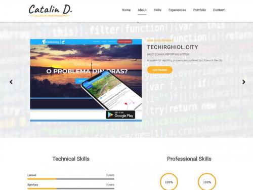 This Portfolio Website